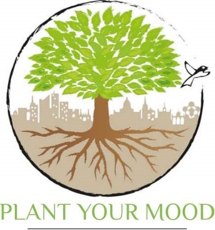 Plant your mood